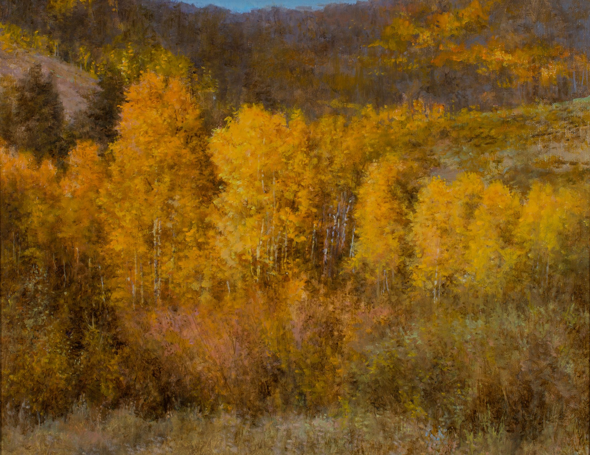 Aspen Trees Oil Painting